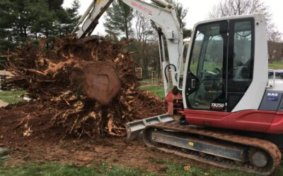 Southington, CT | Excavation & Land Clearing Contractor | Best Excavation Services Near Me