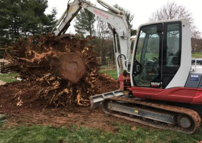Southington, CT | Stump Removal Project | Excavation Services